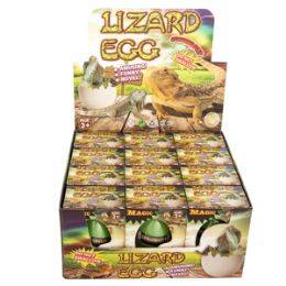 48 Wholesale Growing Pet Lizard Eggs