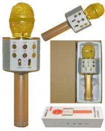 2 Bulk Karaoke Microphone Gold