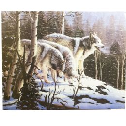12 Units of Wolves In Woods Canvas Picture - Wall Decor