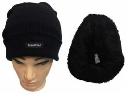 36 Units of Solid Color Black Insulated Beanie Hat - Winter Animal Hats