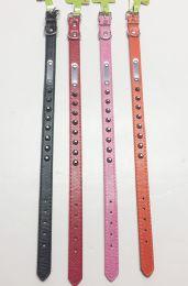 48 Units of Assorted Color Medium Size Dog Collar - Pet Accessories