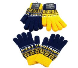 24 Units of West Virginia Knitted Glove In Large - Knitted Stretch Gloves
