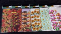 72 Units of 8 Piece Plastic Placemat And Coaster Set - Placemats
