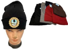 24 Units of City Of Saginaw Mix Color Winter Beanie - Winter Beanie Hats