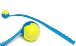 60 Units of Pet Throw Tennis Toy - Pet Toys