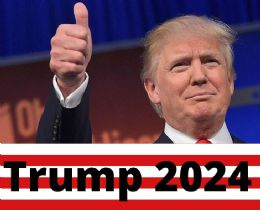 120 Wholesale Trump 2024 Thumbs Up Bumper Stickers
