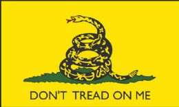 24 of DON'T TREAD ON ME Flag Yellow