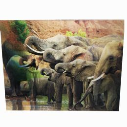 48 Units of Elephant Canvas Picture - Wall Decor