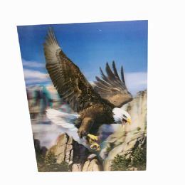 48 Units of Bald Eagle Canvas Picture - Wall Decor