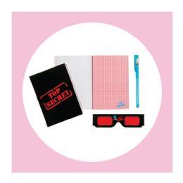 10 Wholesale 1ct. Confidential Spy Top Secret Notebook Set