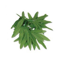 12 of Tropical Fern Leaf Wristlet/anklet