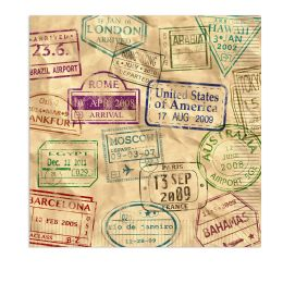 12 Wholesale Around The World Luncheon Napkins (2-Ply)