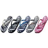 Wholesale Footwear Ladies Flip Flops Zebra Print Assorted
