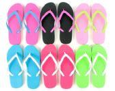 Wholesale Footwear Flip Flop Two Tone